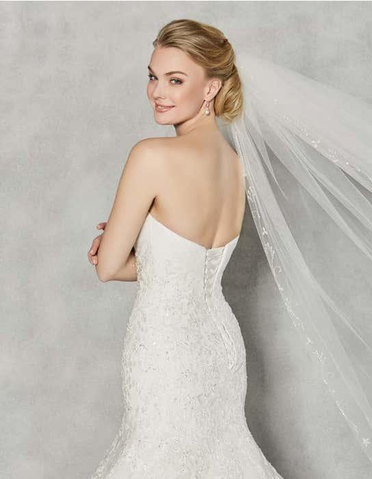 Albany fit _ flare wedding dress back crop Anna Sorrano