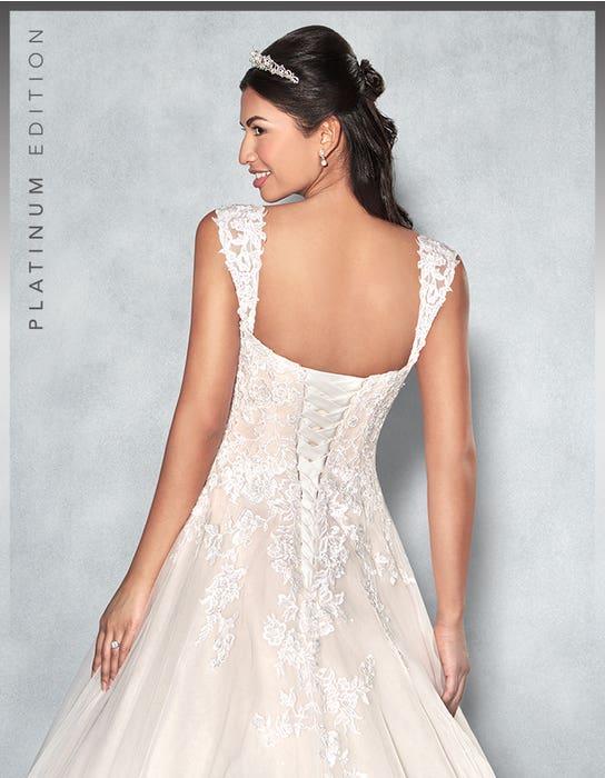 Lexington aline wedding dress back crop Viva Bride