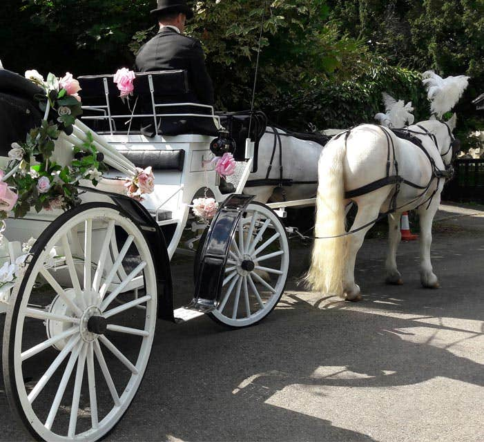 Catherines Carriages