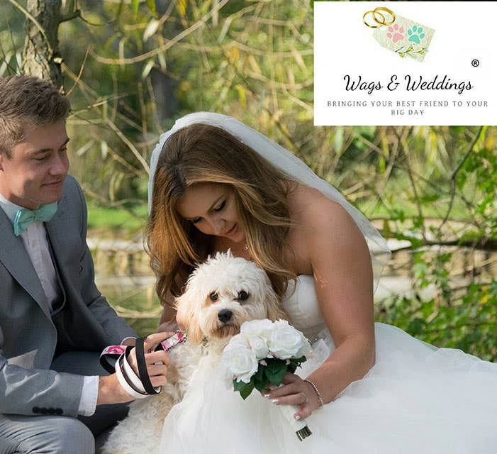 Wags & Weddings