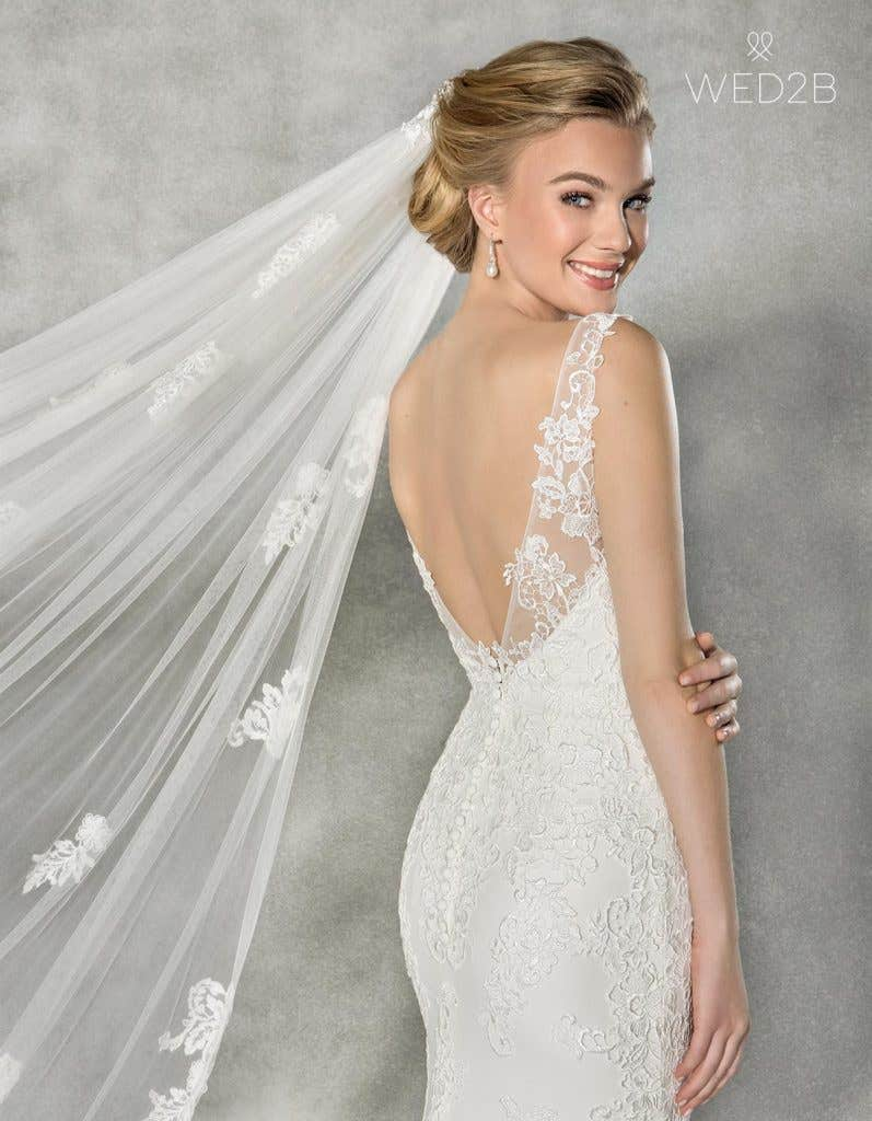 Close-up back view of Elsbeth, a wedding dress by Anna Sorrano