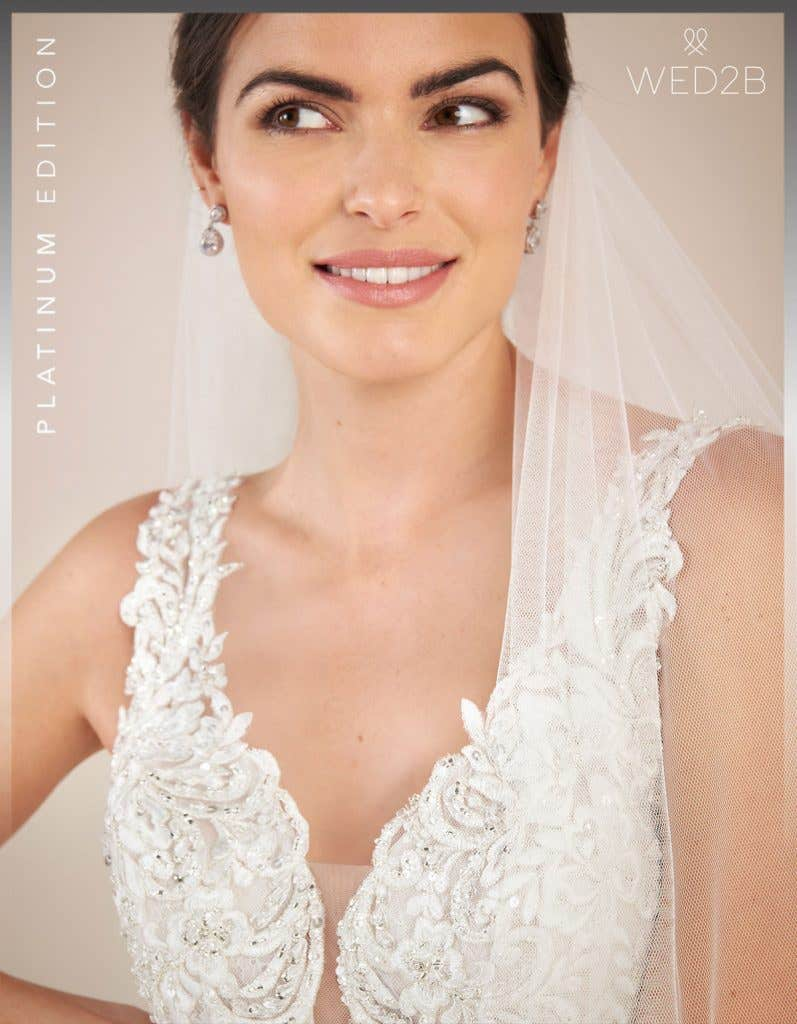 Close-up front view of vintage lace wedding dress Theroux by Anna Sorrano